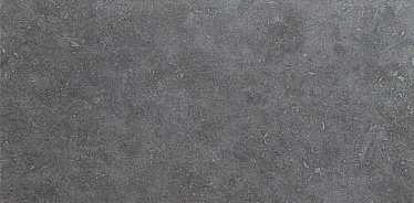 Seastone Gray 45x90 (8S01) 45x90 Керамогранит